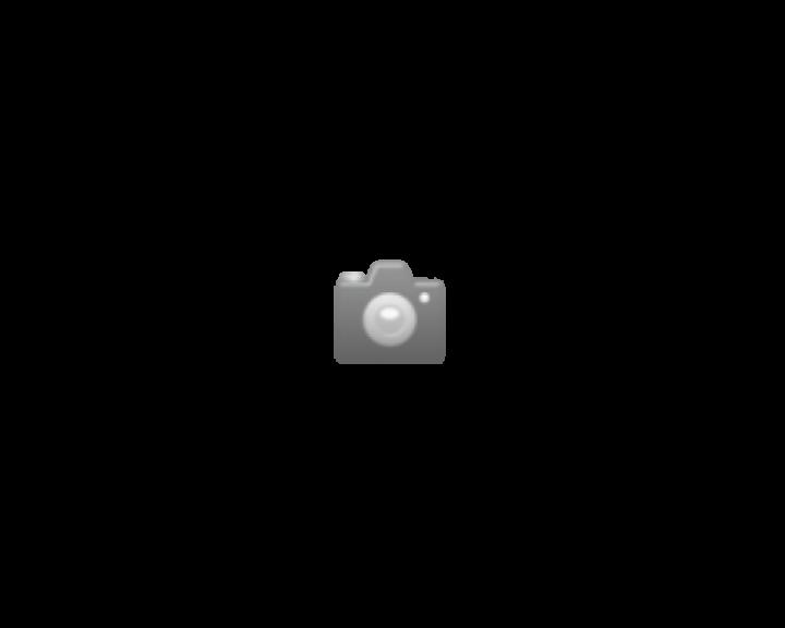 Sensorspender Saraya UD-450 (Handseife)